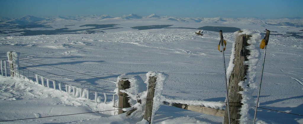 Blairdennon summit, looking north