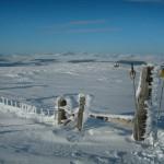 Blairdennon summit, looking north image